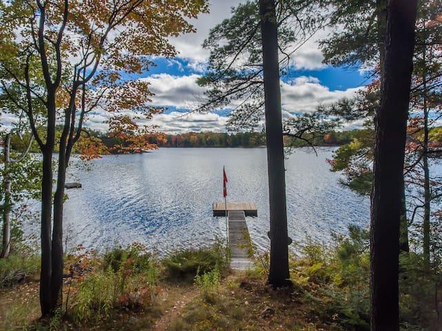 Witnorth on Stewart Lake - MacTier
