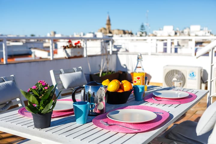 Bright Large Terrace Apartment in City Center