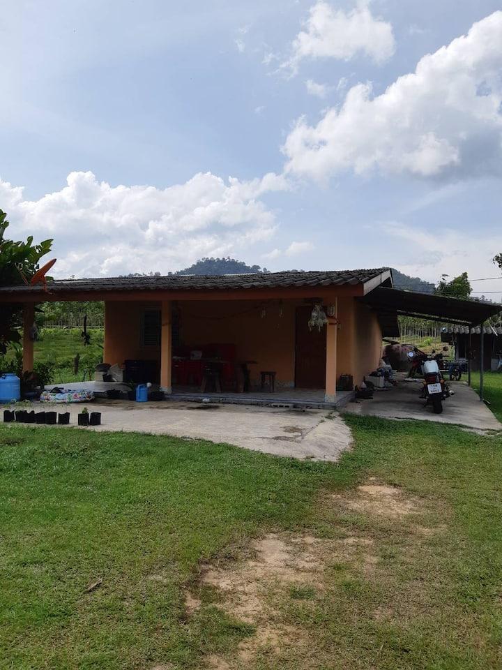 Bansuanmatta Homestay Kantang