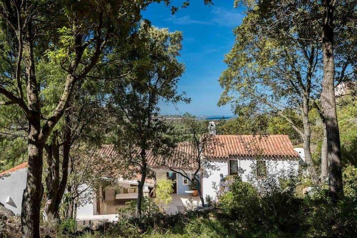 Costa Smeralda Villa con piscina