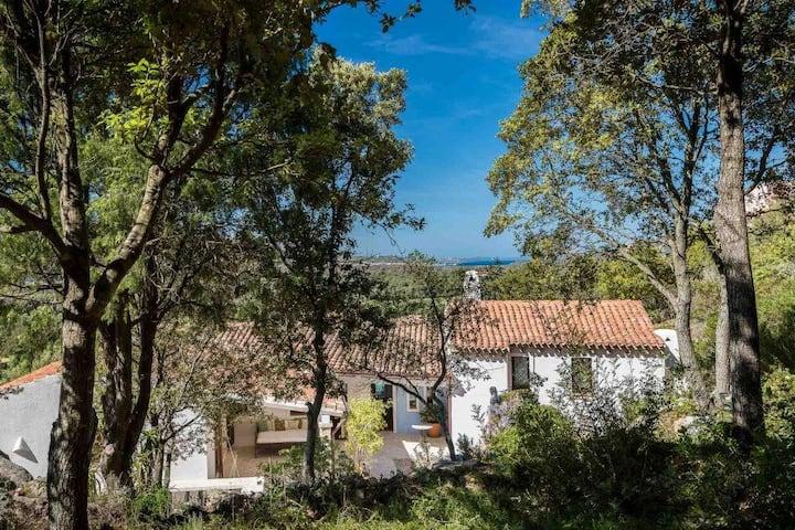 Costa Smeralda Villa  con piscina  Villa Licia