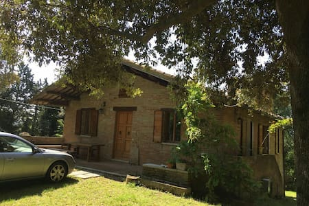 Villa 200 mq con parco di 10.000 mq - Urbino