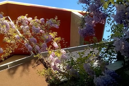 Trieste - appartamento privato in casetta - Trieste - Departamento
