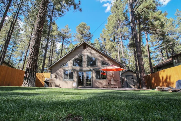 Beautiful Wooded Dream Cabin Backs Forest Service