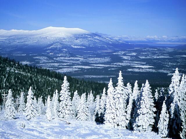 Silver Mountain G1 02 Elleven