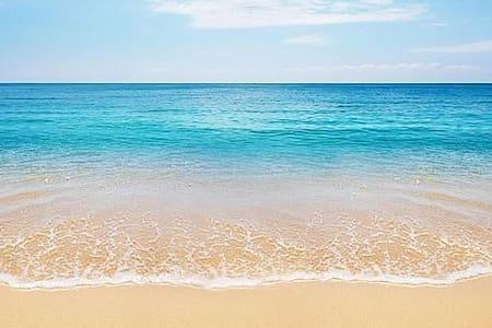 Beach House ☆☆☆☆☆