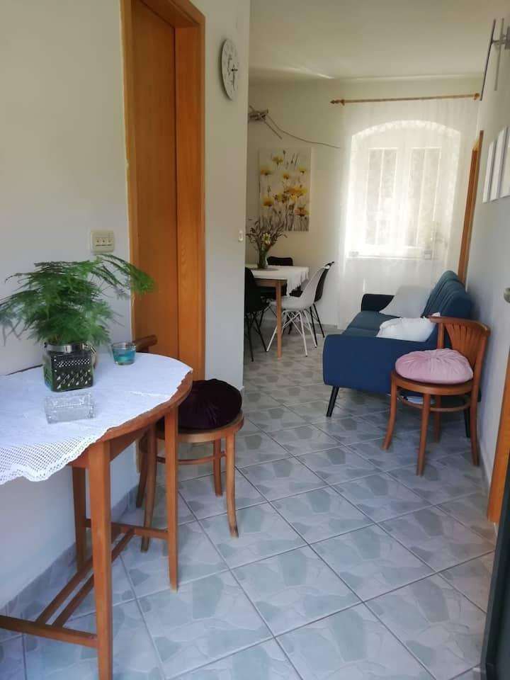 Apartman Marina etno eko selo Dol