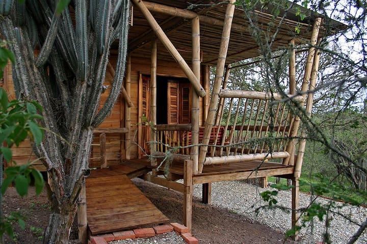 Cabaña en Curia en ambiente ecologico - Curia - Cottage