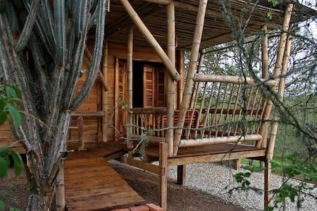 Cabaña en Curia en ambiente ecologico - Curia