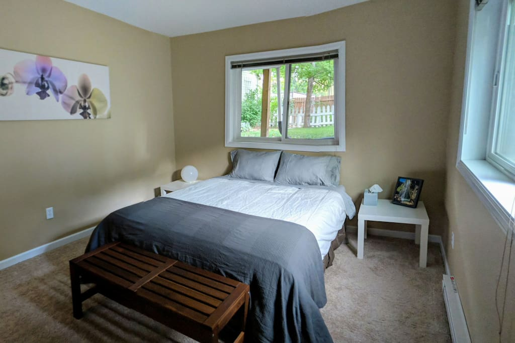 Master Bedroom with two large windows facing the yard