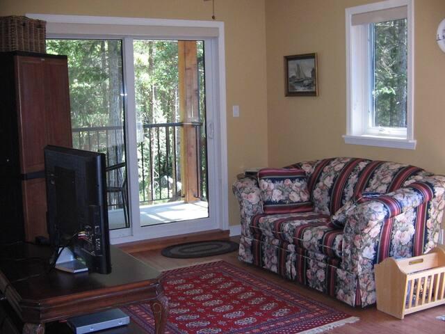 livingroom & balcony. TV, DVD player, DVDs, books.