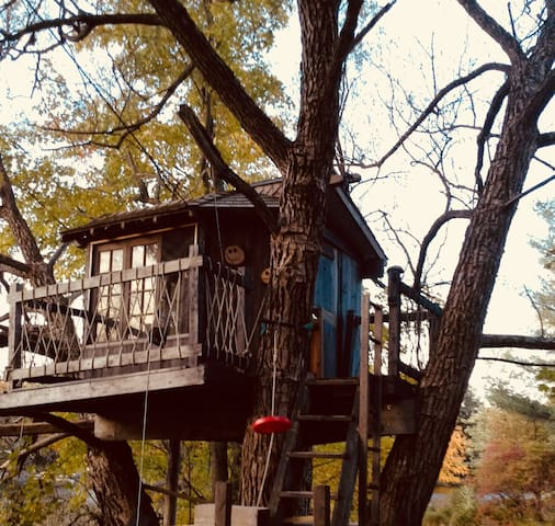 Treehouse and zip line