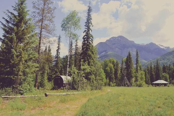 Buffalo Ranch - Wagon in the Woods