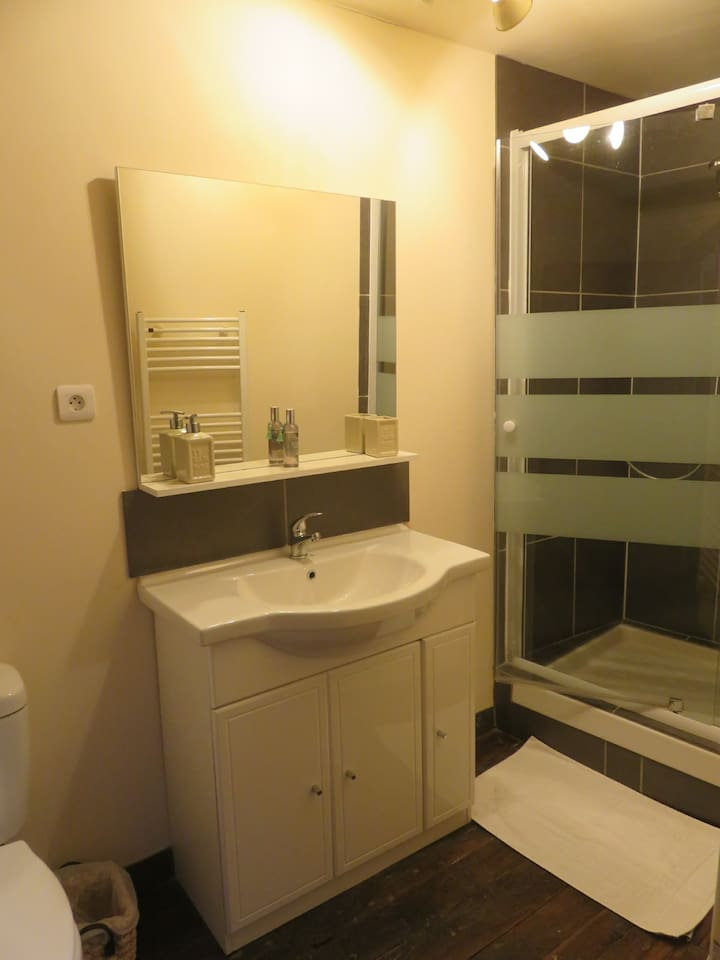 Shower room with white fluffy towels