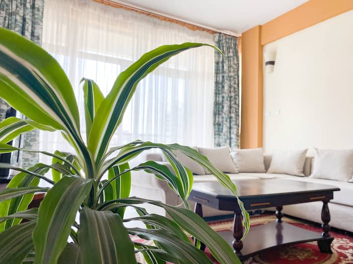 *Spacious & Bright | Central Addis | Near Airport*