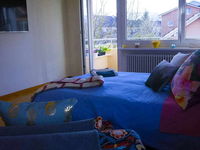 GOOD LOCATION! OLTEN CENTRAL STATION 3min. by walk - Olten - Huoneisto