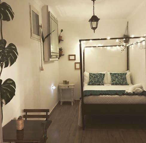 JM Jungle Suite