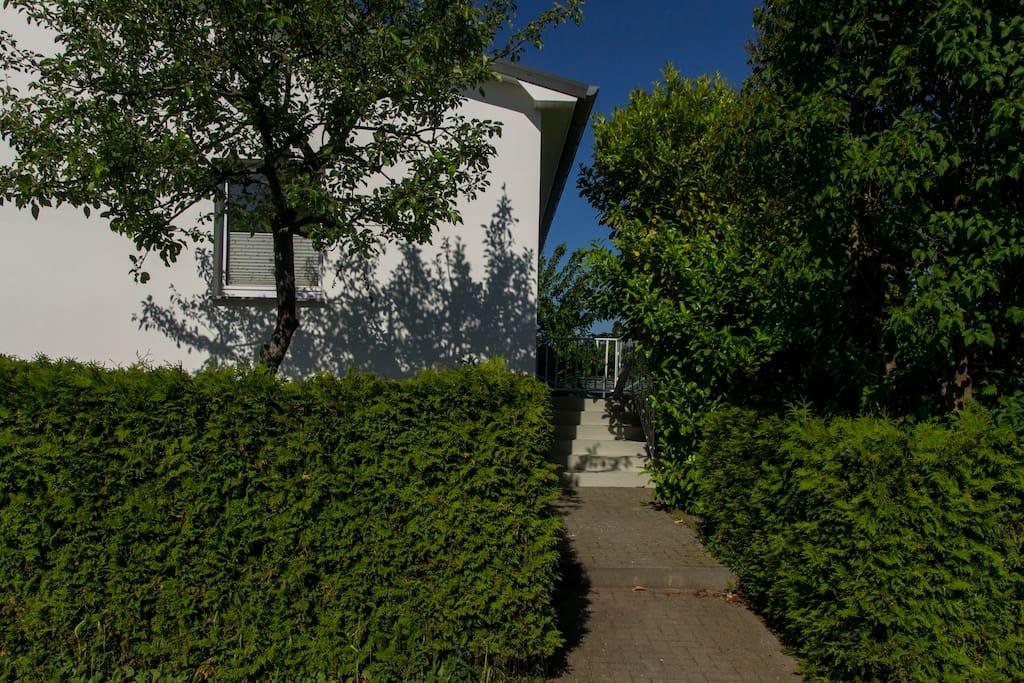 Eingang zum Haus und Garten. Ostseite.