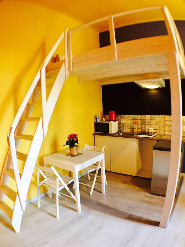Lovely Apartment close to the city center