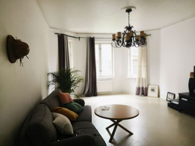 Central Gothenburg 1 bedroom apartment