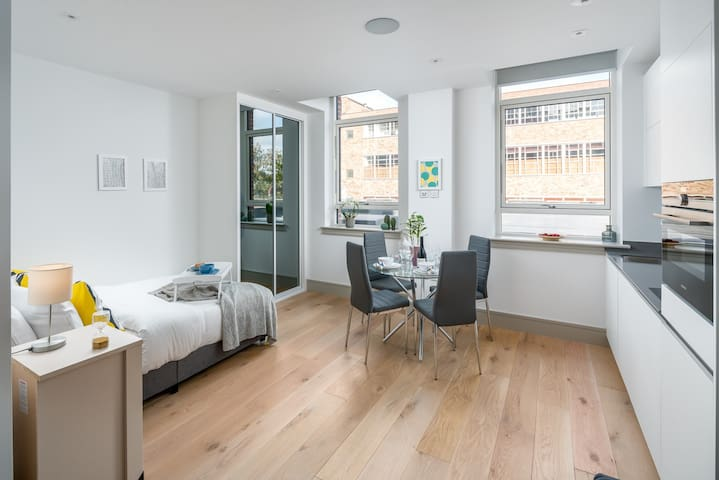 Stylish 1 bed flat in Seven Sisters London