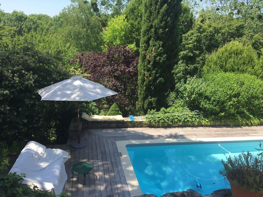 piscine/ Swimming pool