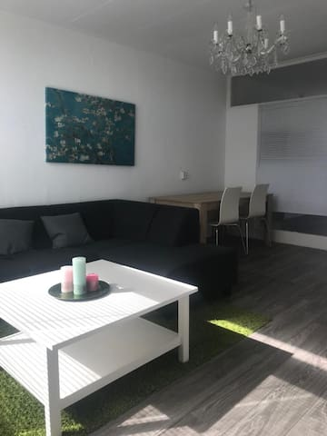 4 persons stay, The Hague (10 min), Beach (15)