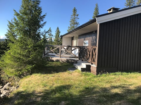 Small cabin in Norways best cross country area!