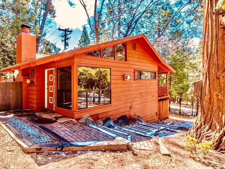 Sparrow Creek Cabin - A Mid-century Modern Escape