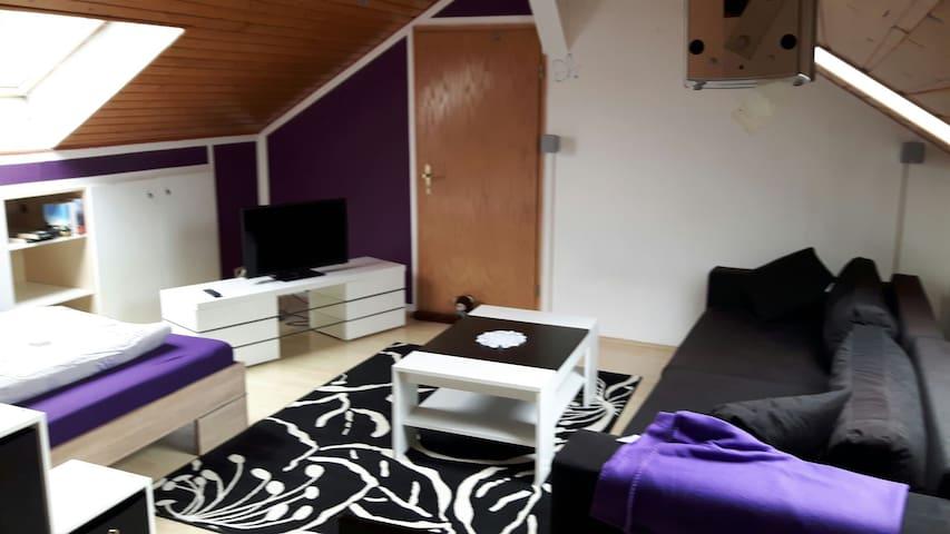 Schöne Dachwohnung mit Schlossblick - Braunfels - Apartmen