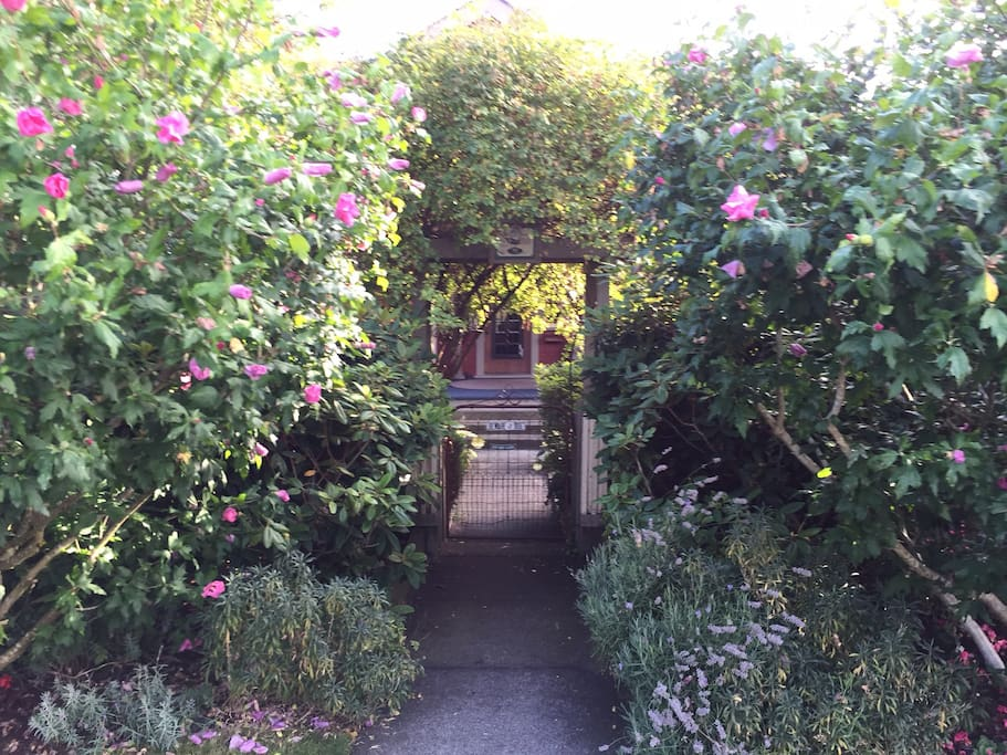 The front entrance to the property is through the rose bush covered trellis.  Stop for a moment to read the plaque to learn a few facts about our historical residence.