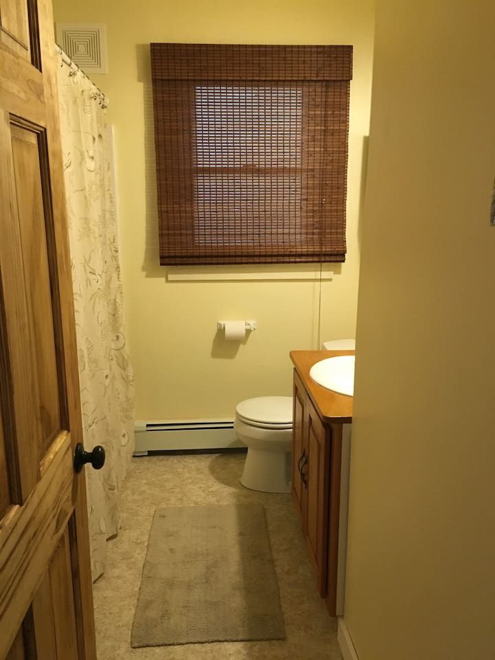 Newly remodeled main bath has shower and tub with great water pressure!