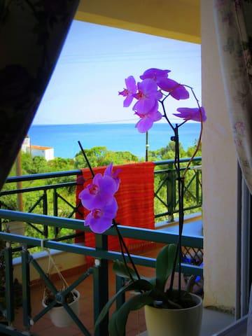 Anna Villa, Limenaria, Thassos Island, Greece - Limenaria - 獨棟