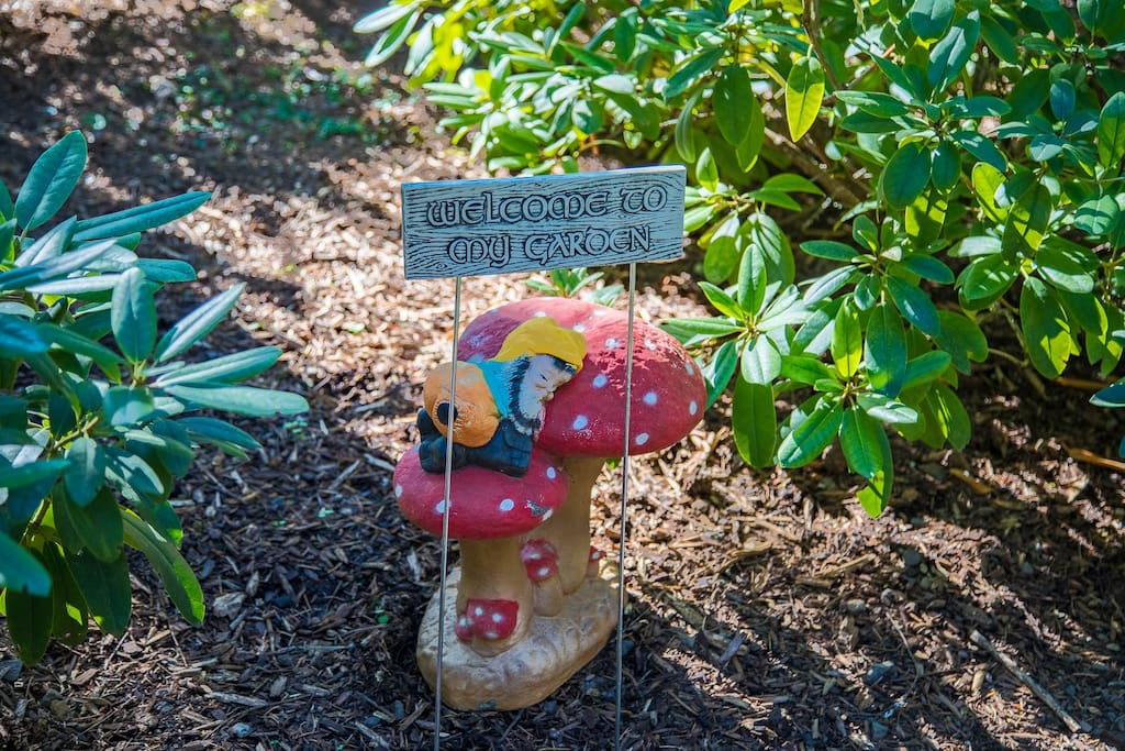 A Gnome's welcome!