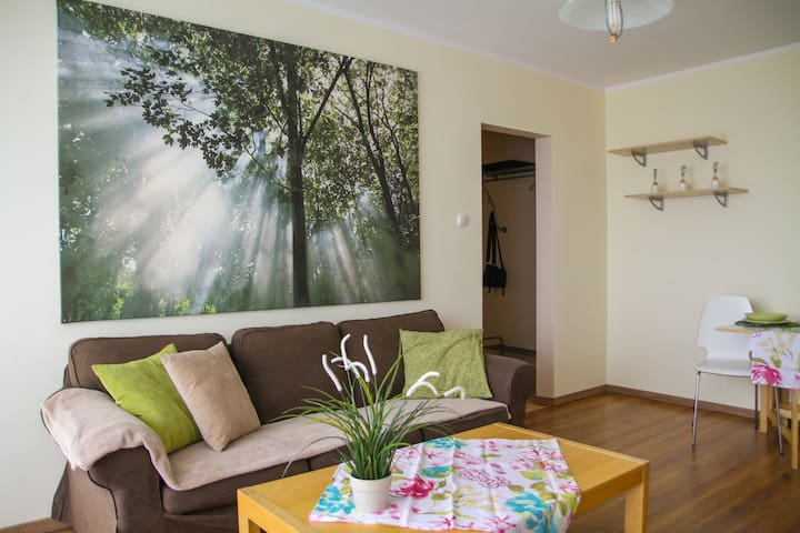 Beautiful spacious apartment with fantastic view of Poznań - Poznań - Apartment
