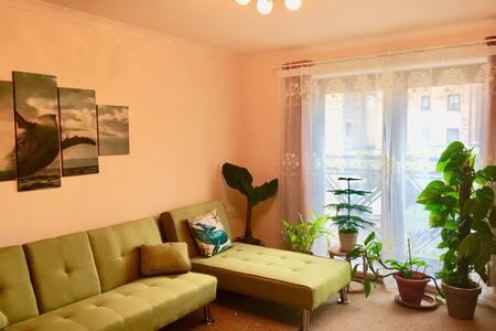 Private room in a quiet area close to City centre