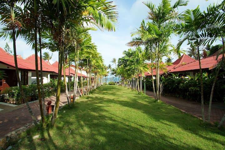 Chaweng Resort - Basic Room03