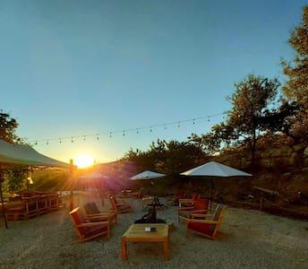 Rural Retreat Destination - Campsite & Picnic