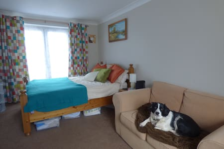 Cosy home in happy household with pets - Exeter