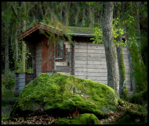 Bara Vila i vildmarksboende vid sjö - Hölseböke - Hytte