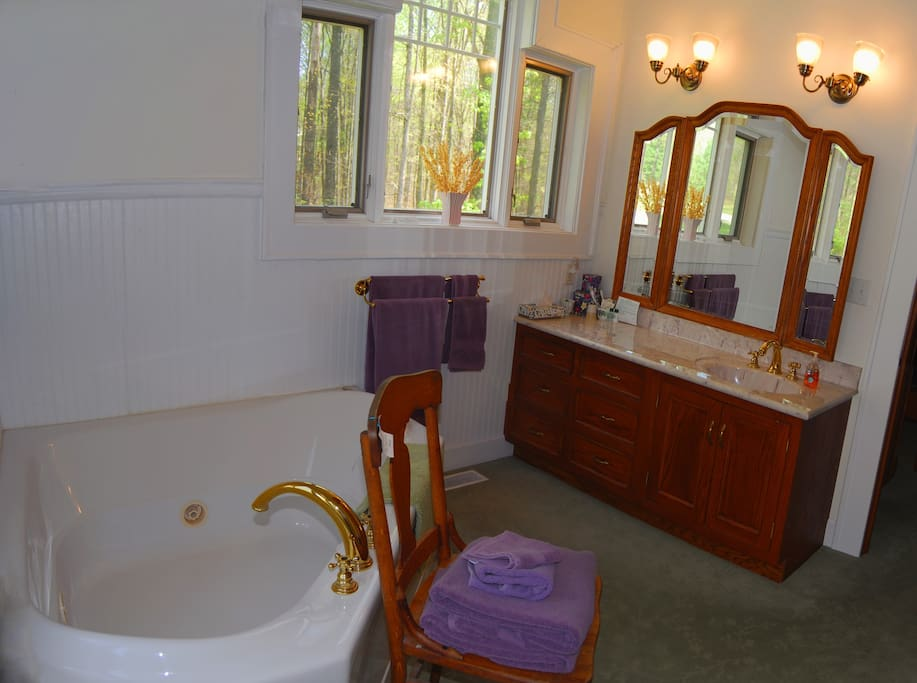 Master Suite bath with jacuzzi tub for two