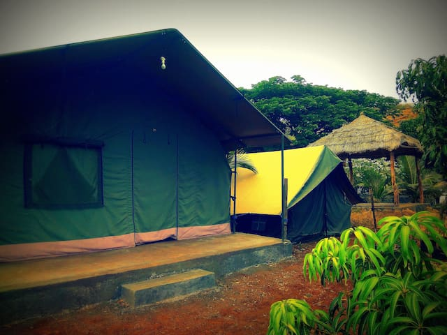 Large Tent - 1 & Small Tent - 2