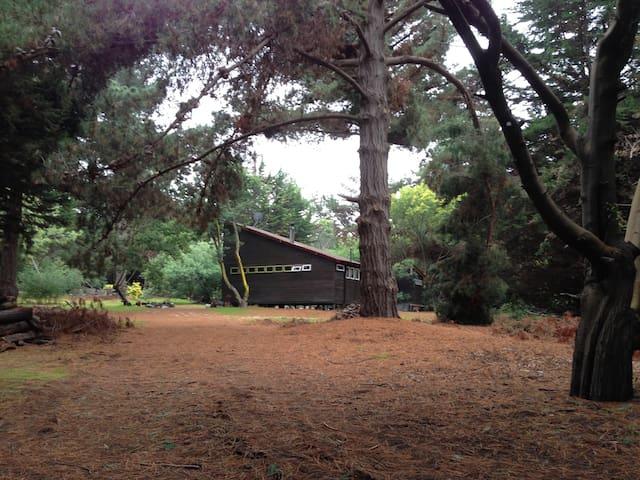 Cabin in Cachagua (Zapallar area) - Zapallar - Cabin