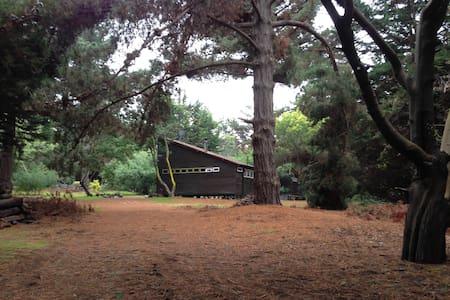 Cabin in Cachagua (Zapallar area) - Zapallar - Zomerhuis/Cottage