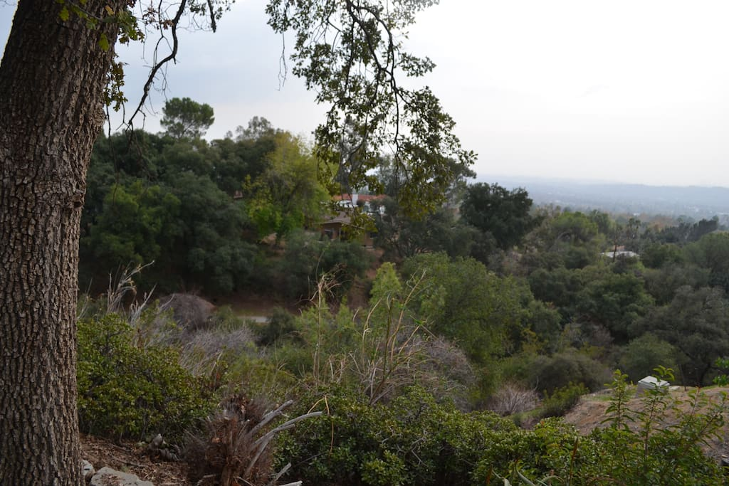 The view from your doorstep on a cloudy day in LA!