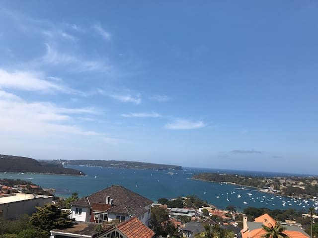 Great Mosman apartment with awesome sea views