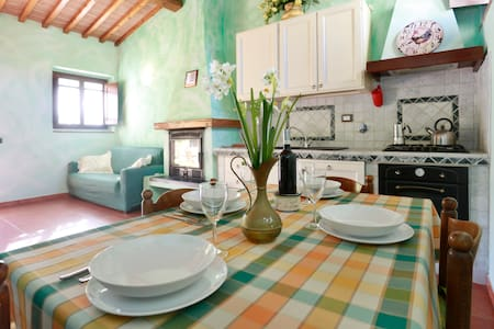 Wonderful holiday house with pool - San Casciano in Val di pesa
