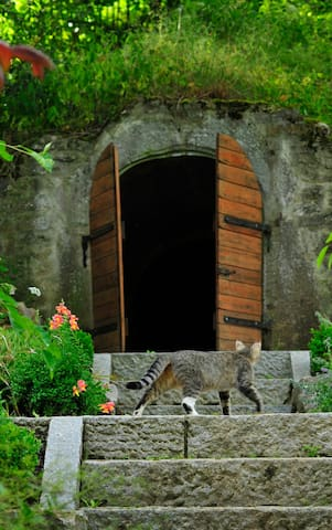 Traum-Ferienwohnung mit Bachlauf im Garten