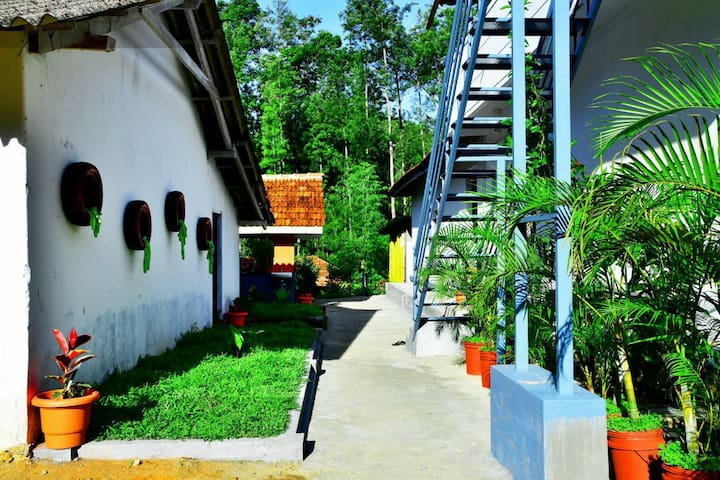 Homestay in the coffee plantation