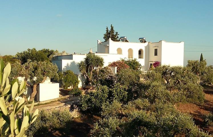 Country Villa -trullo apartment (4)